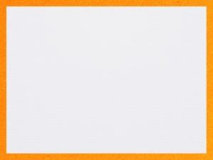 20180420_033357000_iOS-300x225 ペーパーライク枠 オレンジ