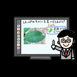IMG_5020-300x300 電子黒板 説明