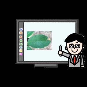 IMG_5021-300x300 電子黒板と先生